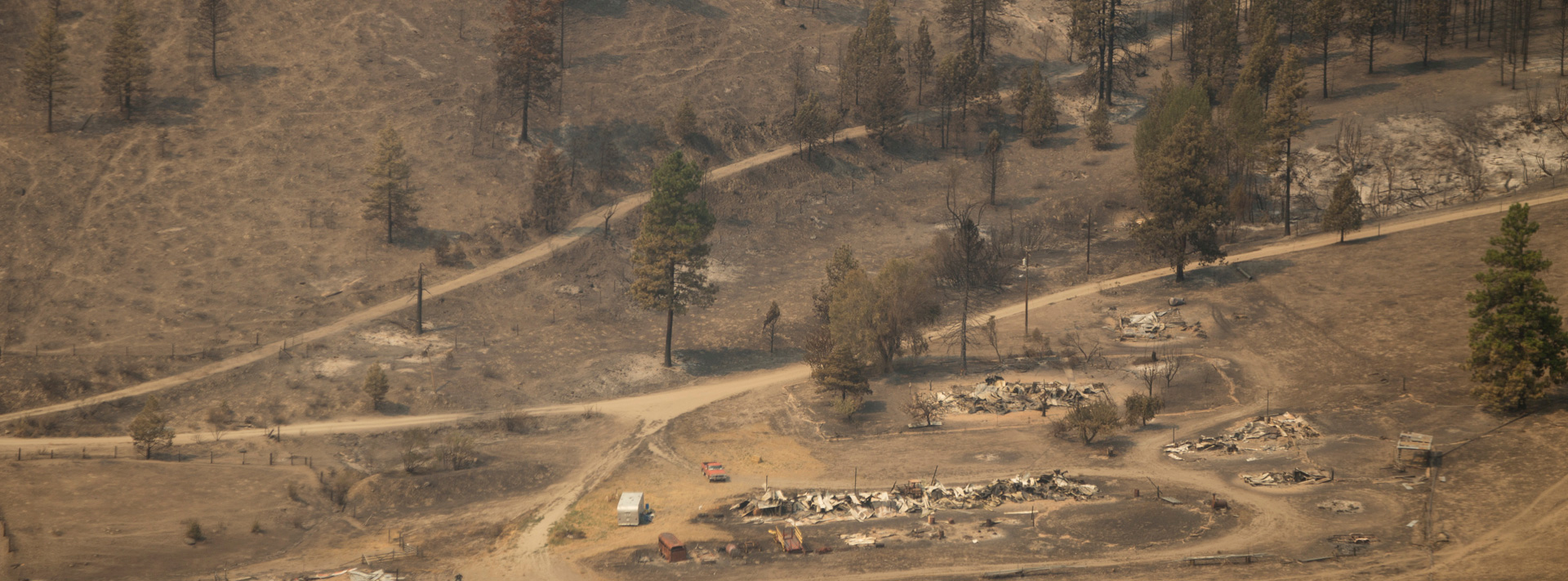 Dry Land from forest fire