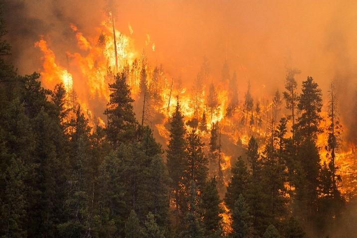 BC Record-Breaking Fire Season