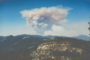 The Effect of Wildfires on Air Quality