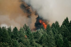 Wildfires in British Columbia