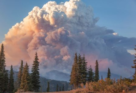 Thunderstorms And Wildfires