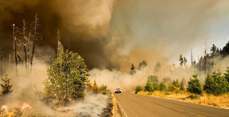 Kincade Fire Report