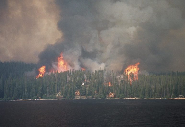 A wildfire approaching houses.