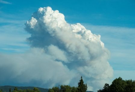 Smoke billowing into blue sky above a forest.