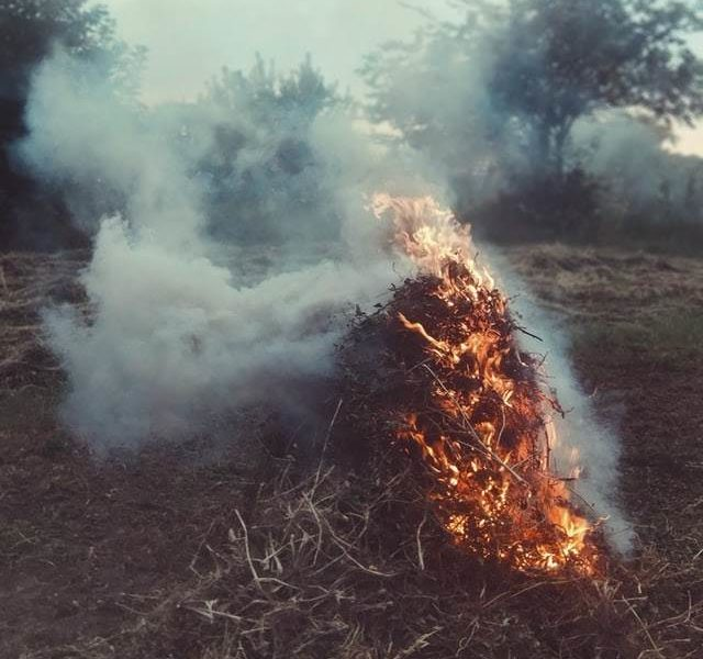 Pile of brush on fire.