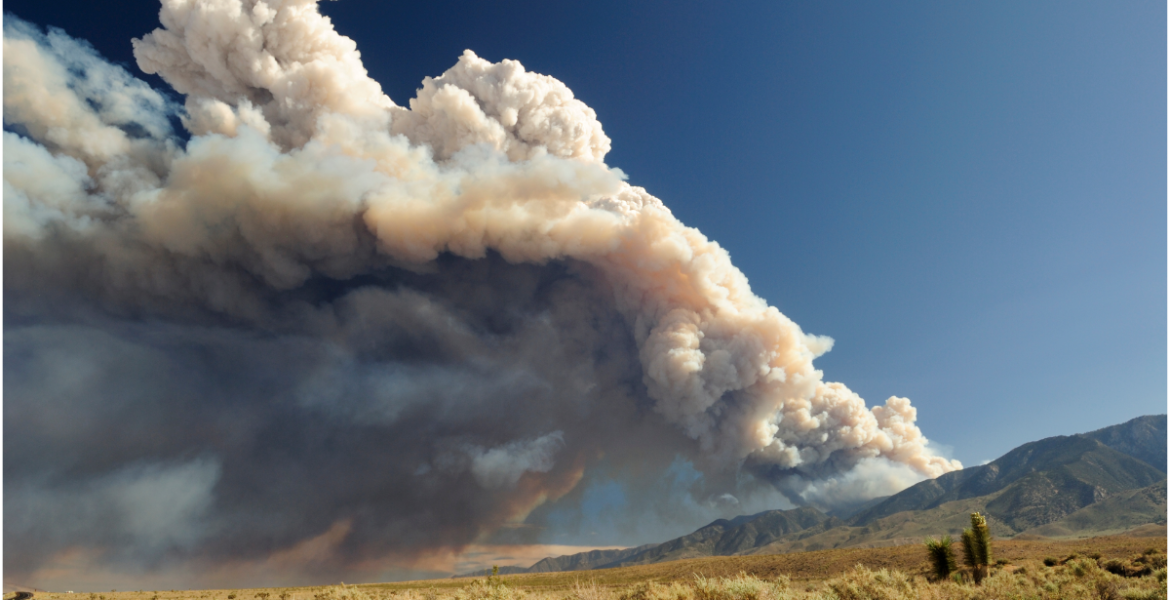Smoke rising into the air from a wildfire.